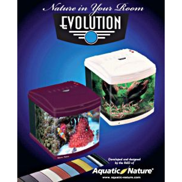 Aquatic Nature Evolution Deep Red