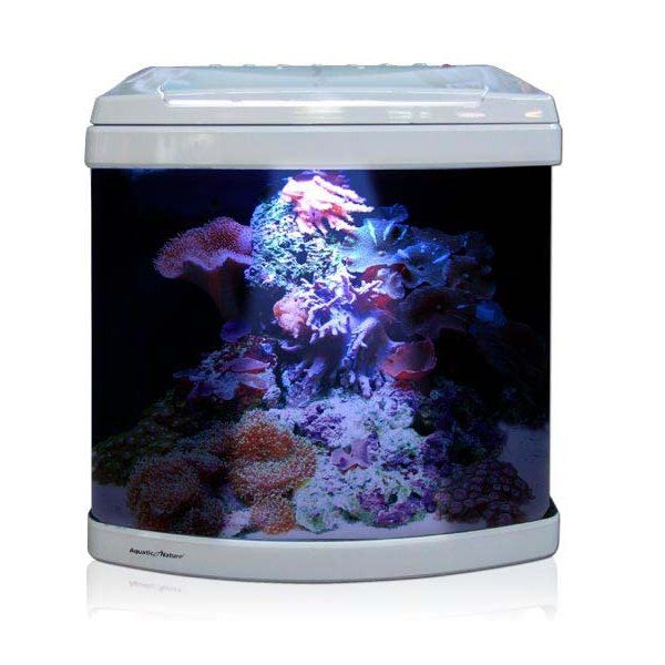 Aquatic Nature Evolution Pearl White