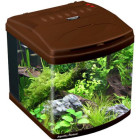 Aquatic Nature Evolution Deep Brown