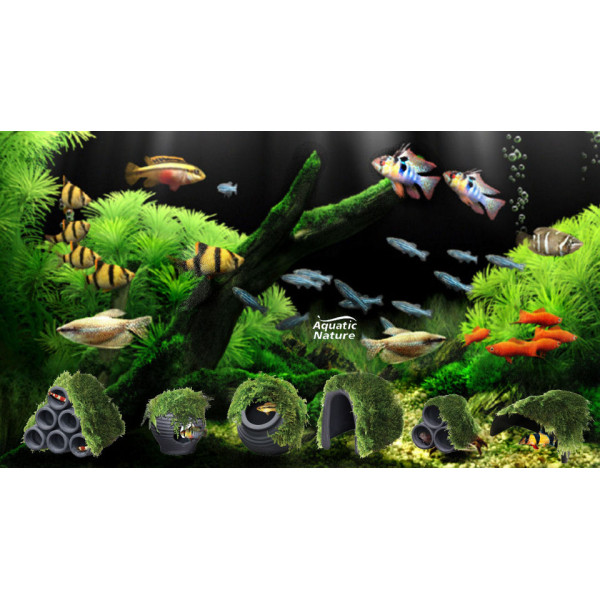 Aquatic Nature Decor Mumo 2