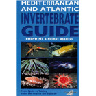 Mediterranean & Atlantic Invertebrate Guide