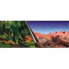 Europet Foto Achterwand Jungle & Dessert 40x80cm
