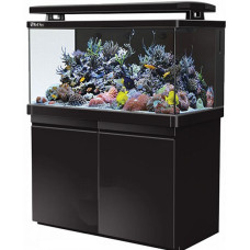 Red Sea Max S-Serie 500 Zwart aquarium + meubel